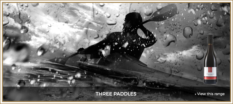 slider 3 – three paddles